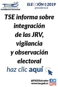 tse-aula-virtual